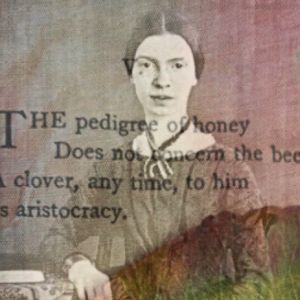 Learn about the characteristics of Emily Dickinson's poems.