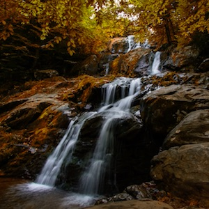 Learn about Shenandoah National Park.
