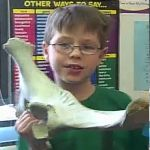 Learn about vertebrates.